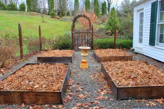 сад осенью пустые грядки