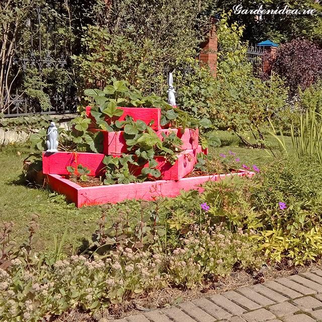 Посадка садовой земляники в пирамидку фото