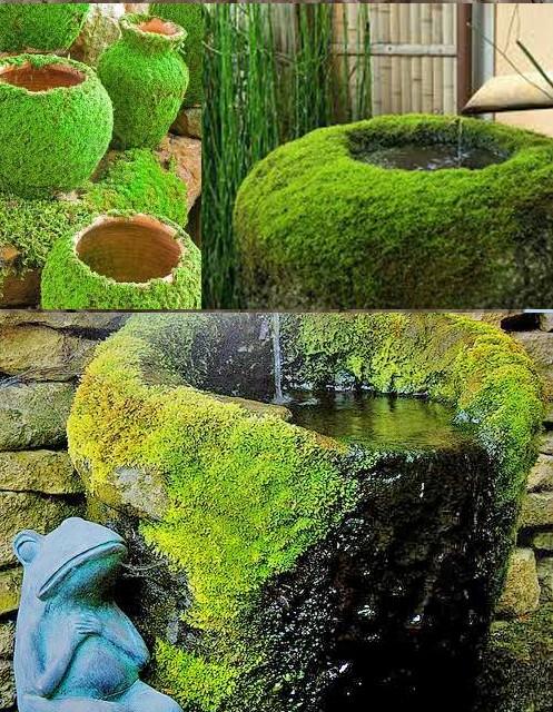Декор емкостей для воды мхом