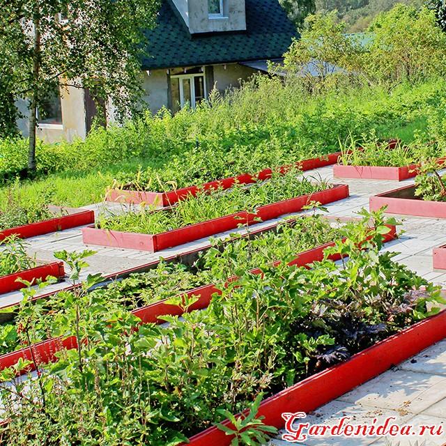Огород красиво своими руками